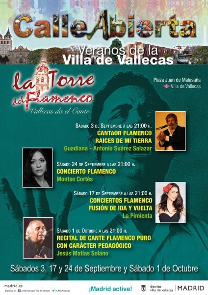Flamenco festival in Madrid - La Torre del Flamenco